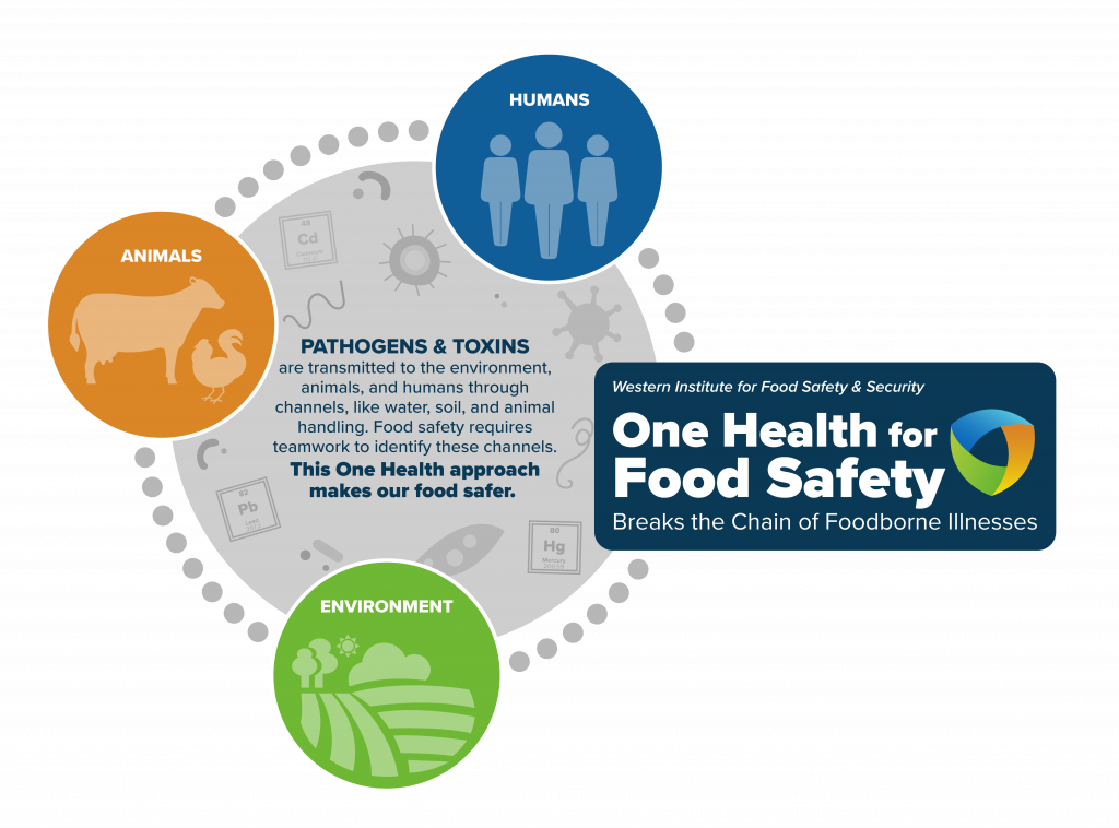 One Health for Food Safety Graphic