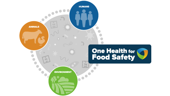 One Health for Food Safety chain
