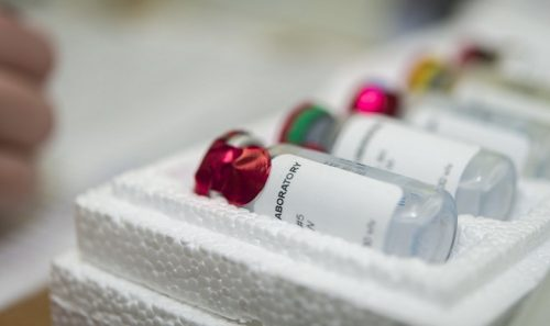 A team from the Naval Medical Research Center worked in collaboration with Navy Medicine's overseas laboratories to collect phages from environmental sources around the world. (U.S. Navy photo)