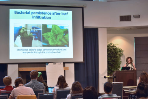 Dr. Maeli Melotto presenting on the genetic components associated with human pathogenic colonization of lettuce